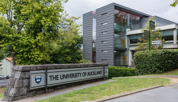auckland-master-of-health-leadership-international-student-scholarships